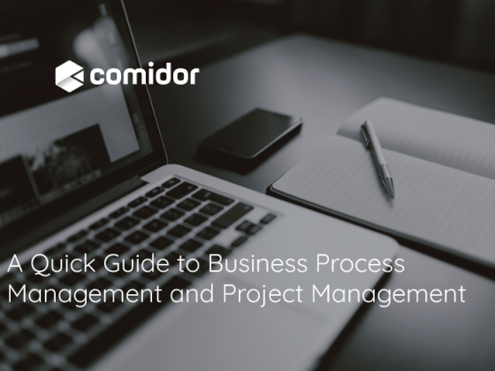 A Quick Guide to Business Process Management and Project Management